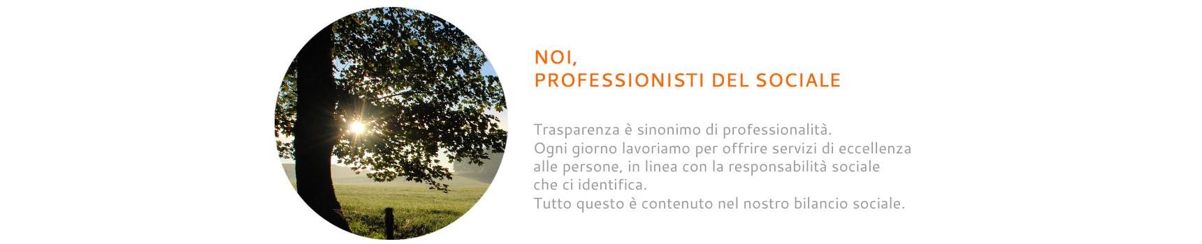 03-Noi-professionisti